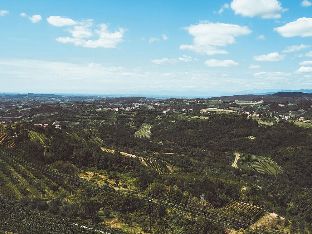 Weinland in Slowenien